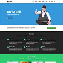 Appico Theme - Business Theme